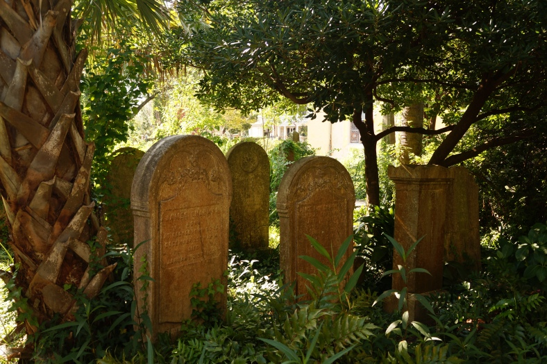 A beautiful cemetery and garden in the heart of Charleston.
