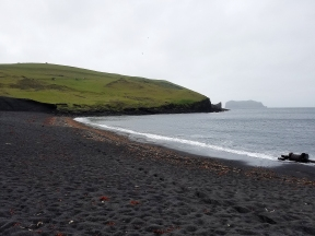 The famous black sand beaches of Iceland.